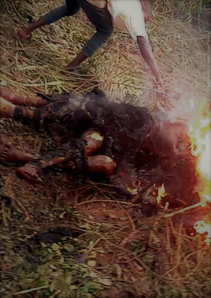 https://bluebloodz.com/index.php/2020/07/25/2-burnt-to-death-over-robbery-allegation-[-see-photos-]/‎(opens in a new tab)